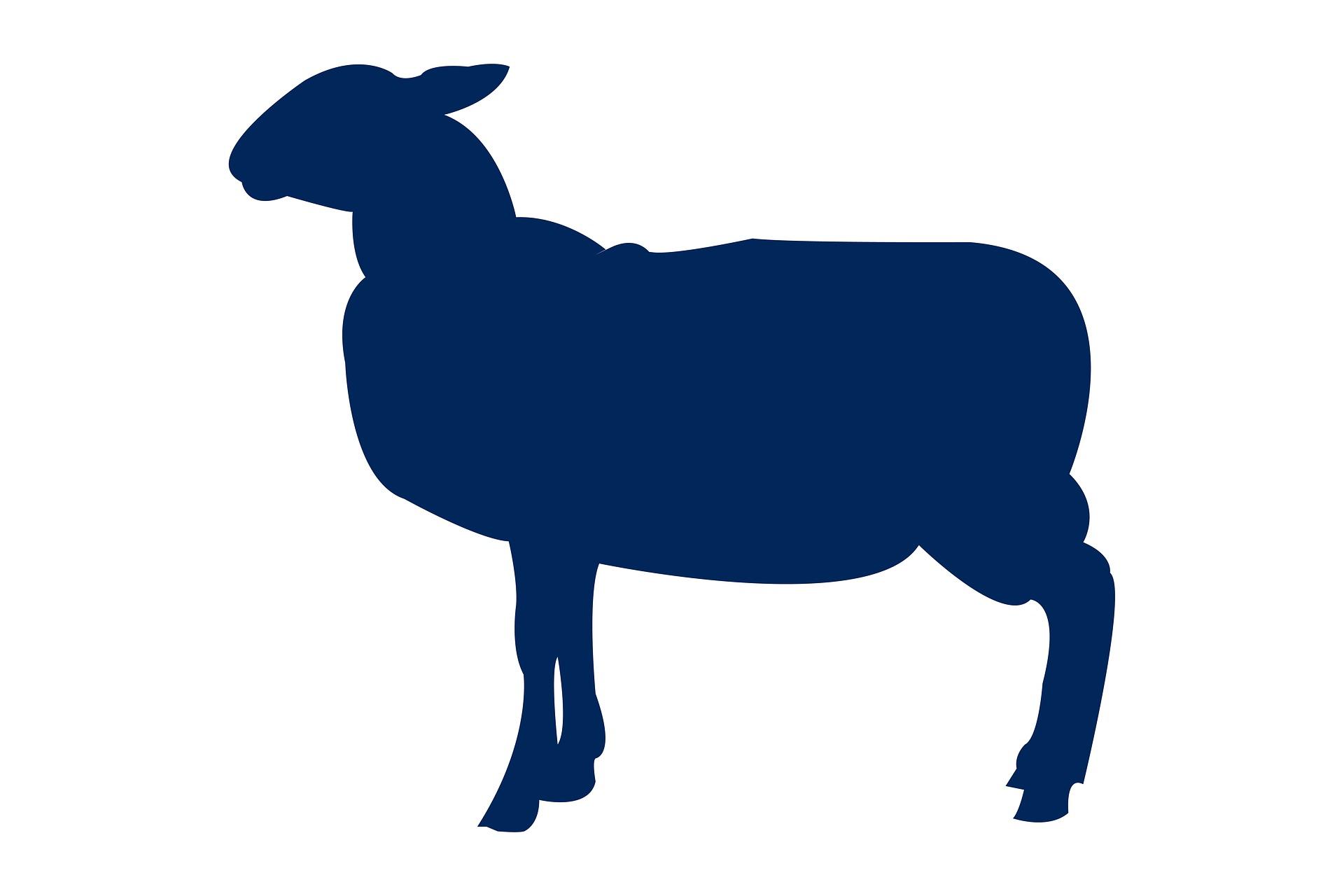 Lamb Tab