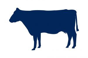 Beef Icon Tab